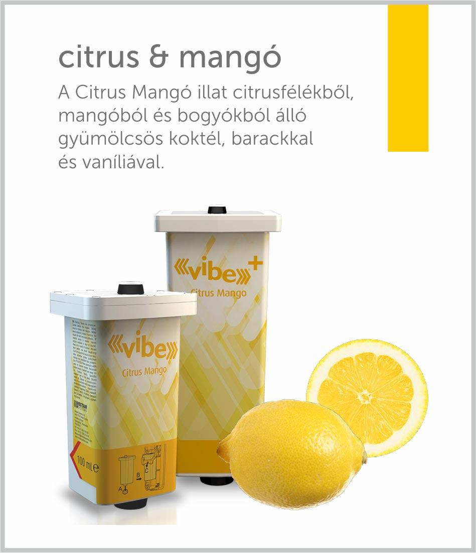 vibe-illat-citrus-mango